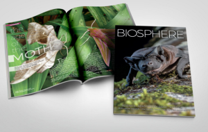 Biosphere_Cover